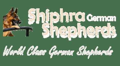 Breeder Tour - German Shepherd Breeders Ontario | German