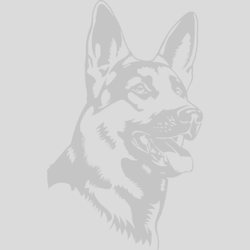 Testimonials - German Shepherd Breeders Ontario | German