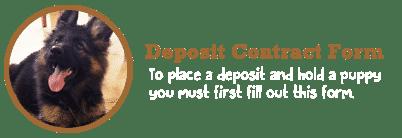 shiphra_depositapp