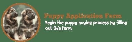 shiphra_puppyapp